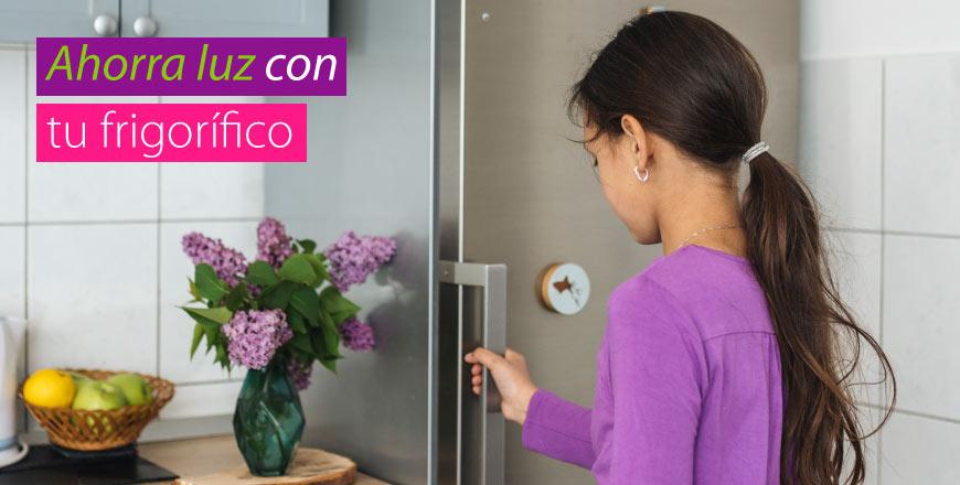 Ahorra en tu factura de la luz con tu frigorífico